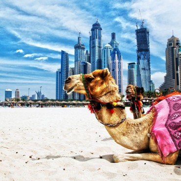 City Break in Dubai,...